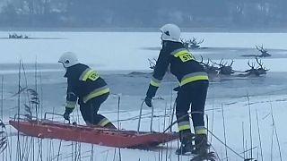 Rettungseinsatz der Feuerwehr
