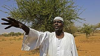 Darfur farmers live in fear of attack by Arab militiamen