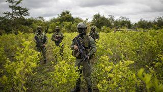 Kolombiya askerleri