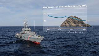 La strategia vincente della pesca nella Fossa di Pomo
