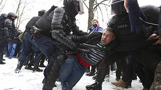 Police detain protesters during a protest against the jailing of opposition leader Alexei Navalny in St. Petersburg, Russia