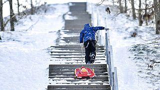 Mit dem Schlitten im Schnee von Gelsenkirchen