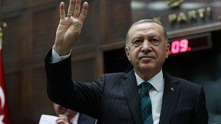 Turkey - Ergodan