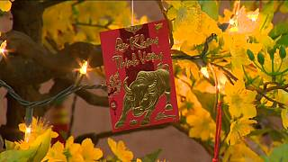 """A card on a lit up cherry tree marks Lunar New Year 2021 """"The Year of the Ox"""""""