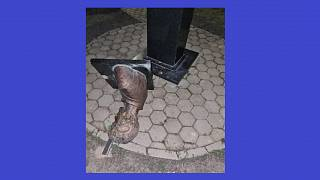 A megrongált szobor