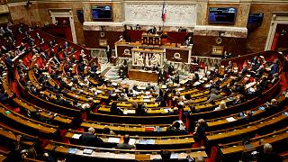 الجمعية الوطنية الفرنسية في باريس