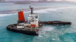 Mauritius oil spill: Captain claims he drifted ashore in search for internet