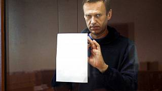Rus muhalif Aleksey Navalny, Moskova'daki mahkeme salonunda