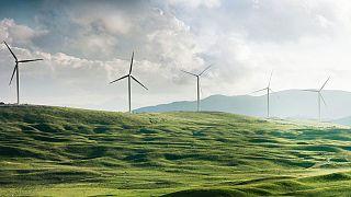 لطاقة النظيفة، مثل طاقة الرياح، عنصر رئيسي في الوصول إلى صفر انبعاثات لغازات الاحتباس الحراري. الصورة لمحطة توليد الطاقة بالرياح في مونتينغرو.