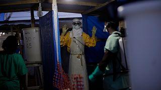Gine'de Ebola virüsüne karşı dezenfektan ile temizlenen bir sağlık görevlisi (arşiv)