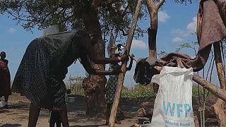 Soudan du Sud : les violences communautaires inquiètent