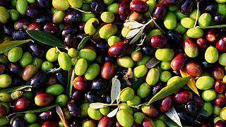 Joe Biden tiene la sartén por el mango del aceite de oliva español