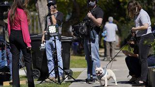 كلب بولدوغ  للمغنية الأميركية ليدي غاغا بين أعضاء وسائل الإعلام بالقرب من منطقة في شمال سييرا بونيتا أفينيو حيث تم إطلاق النار