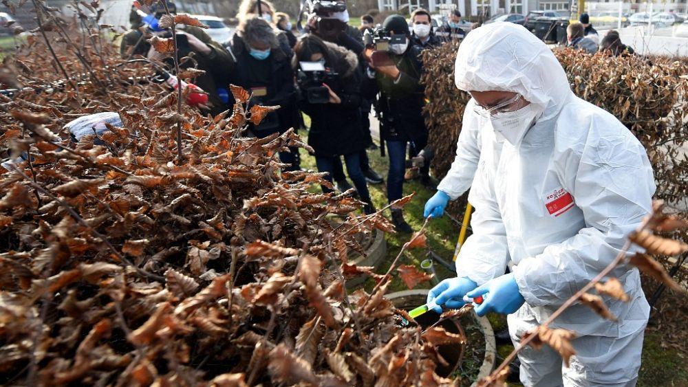 Mutante B.1.351: Französische Grenzregion ist Virusvariantengebiet