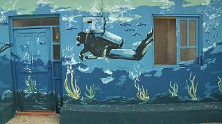 Cape Verde's sea-inspired murals protect aquatic biodiversity