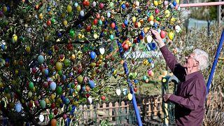 Reichlich geschmückter Osterbaum (Aufnahme aus dem Jahr 2020)