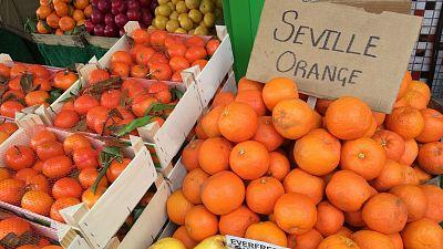 Seville Oranges, Spain