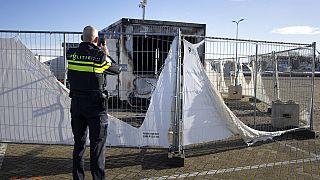 Archiv: Polizist eine ausgebrannte Coronavirus-Testanlage im Fischerdorf Urk in den Niederlanden, 24.01.2021