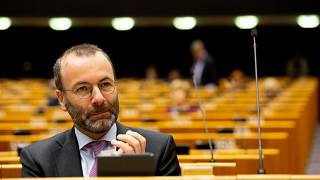 Manfred Weber leads the EPP in the European Parliament