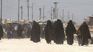 31 قتيلاً على الأقل في مخيم الهول في سوريا منذ مطلع العام