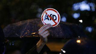 Protest gegen die AfD - ARCHIV
