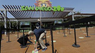 Ο ζωολογικός κήπος του Σαν Ντιέγκο (ΗΠΑ)