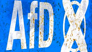 Justiça alemã suspende vigilância à AfD