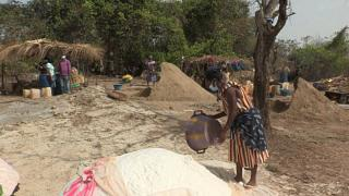 Empowering women in Guinea Bissau in the salt industry