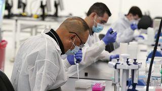 مخبريون يجرون اختبارات تتعلق بكوفيد-19 في فالنسيا،كاليفورنيا.