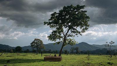 RDC : six kidnappeurs présumés lynchés dans le Nord-Kivu