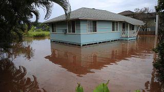 Landunter auf Oahu: Sturzfluten im Surferparadies