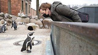 Wilhelma - Zoo in Stuttgart - ist wieder geöffnet