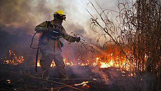 Tűzoltó küzd a lángokkal Argentinában