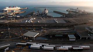 Lorries at the port in Dover, UK, which saw huge delays following the end of the transition period