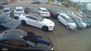 Galeriden otomobil çalan hırsızı aracın kaputuna tutunan satış görevlisi durdurumadı | Video