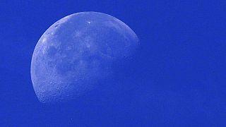 Ay'da tüm canlıların DNA'larını saklama projesi