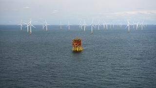Fishermen and wind farms must learn to coexist, says MEP