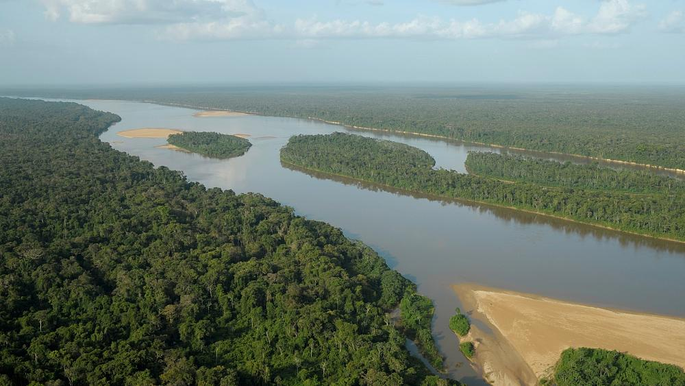 Does the Amazon rainforest emit more greenhouse gases than it absorbs?