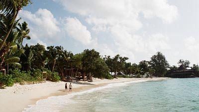 on a beach, seychelles.