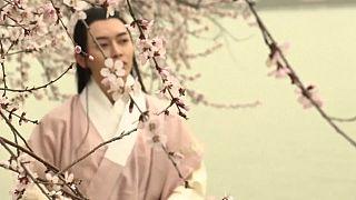 Virágba borultak a pekingi barackfák
