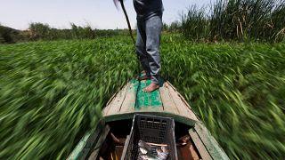 مزارعون يخسرون أراضيهم بسبب النزاع الحدودي