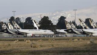 طائرات تابعة لخطوط نيوزيلاندا في مطار كرايستشروتش.2020/05/20