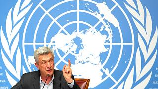 کمیسر عالی سازمان ملل متحد در امور پناهندگان
