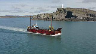 Vor der Südküste Irlands befinden sich viel befahrene Schifffahrtswege - und Wale, die von den Schiffen gestört werden.