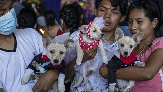 احتفلات القديس لازاروس في نيكاراغوا