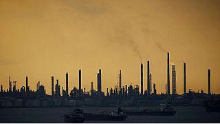 Dr.Swan'ın 'Gerisayım' kitabı çevresel kirliliğin insanların üreme kabiliyetini nasıl etkilediğini ortaya koyuyor