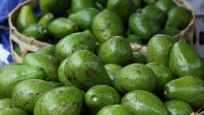 The scaly green fruit has been a source of much environmental controversy in recent years.