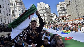 Algerians protest against government in new Hirak demonstration