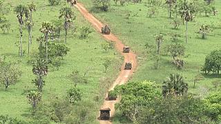 Ivorian soldiers killed in attacks on military camps