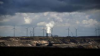 rüzgar türbinler ve nükleer enerji santrali aynı karede